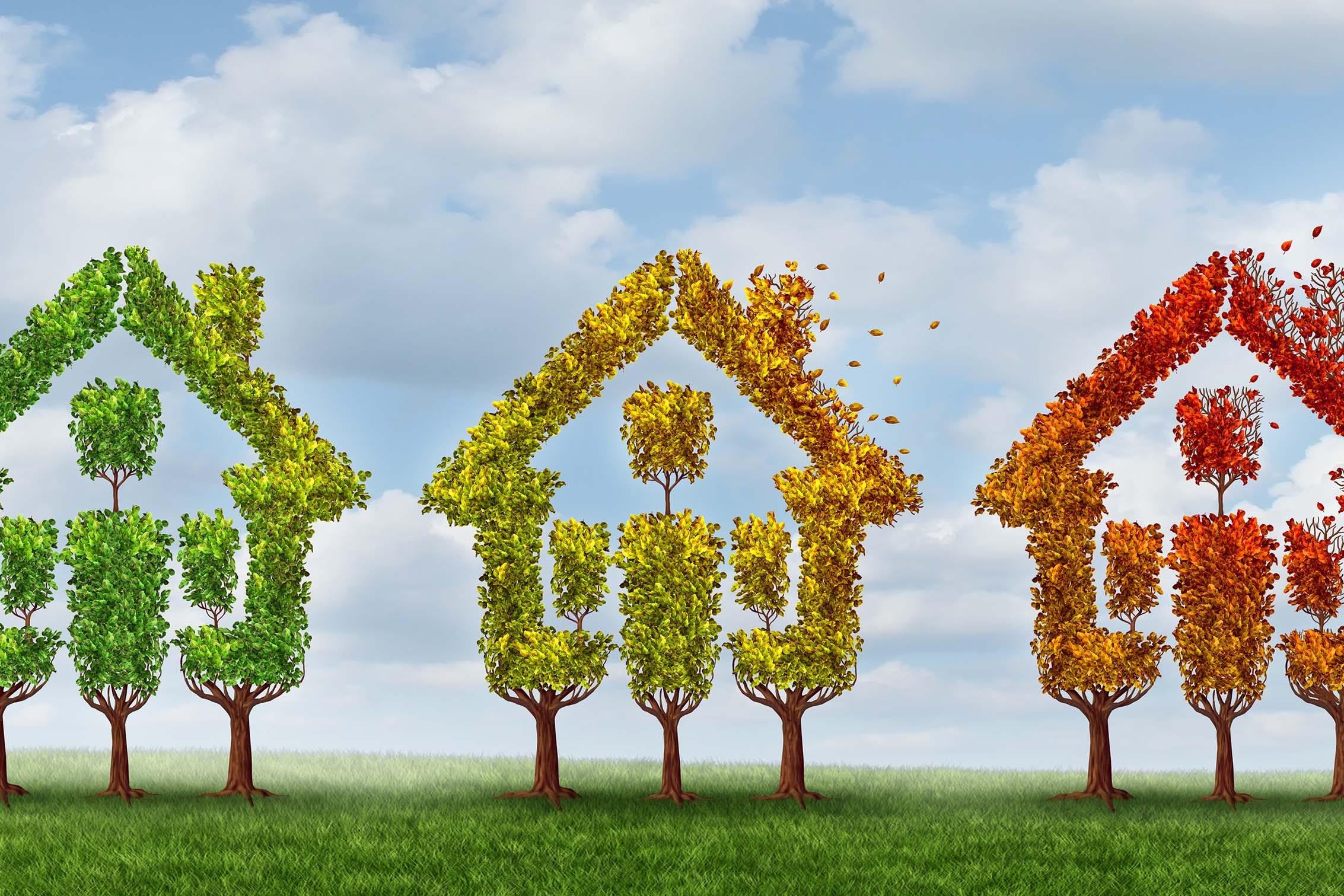 Wat is de beste periode om uw woning te verkopen? De invloed van het seizoen op de woningmarkt