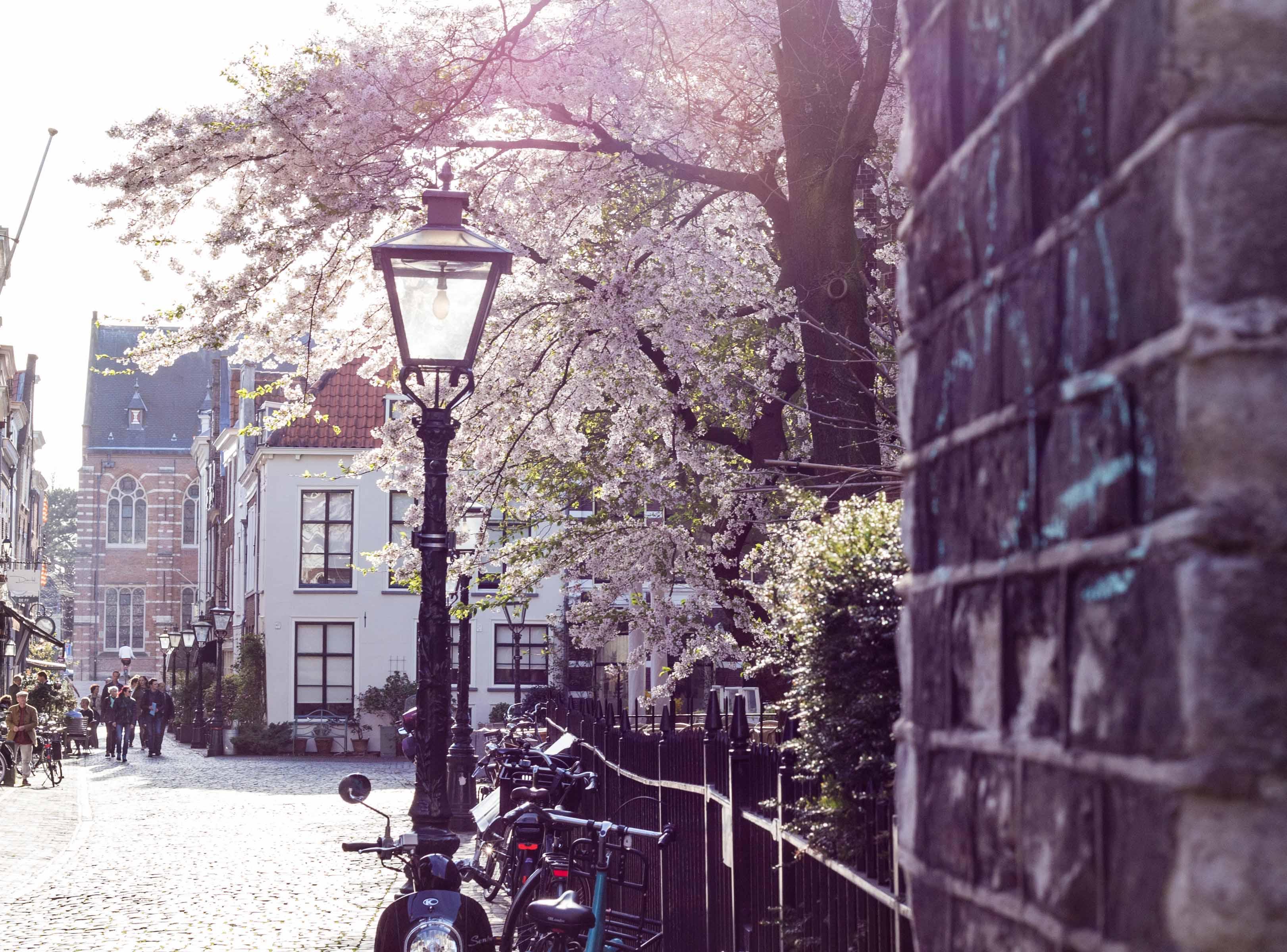 Zicht op de Woningmarkt - De landelijke woningmarktcijfers over het tweede kwartaal van 2018